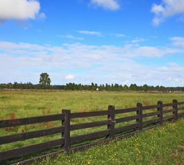 The equal grassy farmer field
