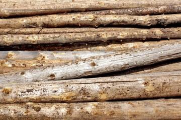 Woodpile of cut Lumber