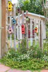 colorful birdcages hanging on the wood wall