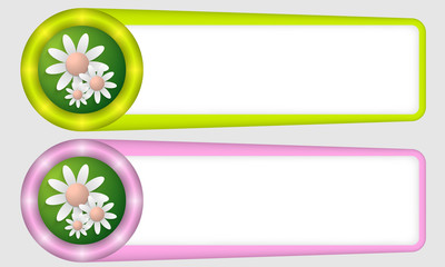 green and purple frames for any text with flowers