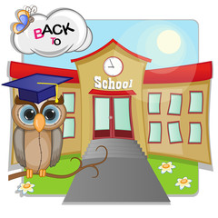 Owl and school