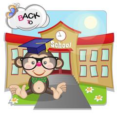 Monkey and school