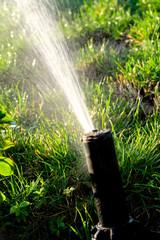 Spinkler in garden at sunset macro i mage