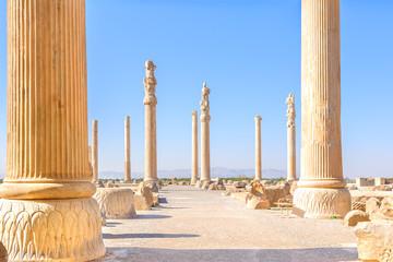 Columns of Persepolis in north Shiraz, Iran.
