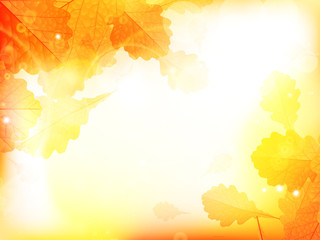 Autumn design background with leaves