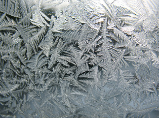 frozen winter window