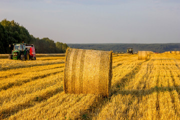 трактора убирают рожь в поле