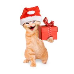 lächelnde Katze mit Weihnachtsmütze und Geschenk, isoliert