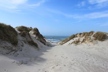 Hvide Sande Dünenlandschaft