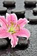 Lilia z kamieniami bazaltowymi