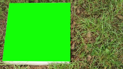 stone board on the ground (grass) - green screen