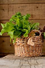Sorrel leaves in a basket