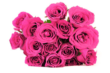 fantasy pink roses bouquet on white background