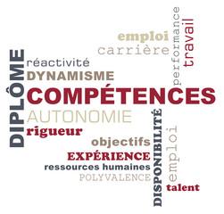 Nuage de mots sur le thème :compétences et diplôme