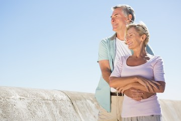 Happy senior couple embracing on the pier
