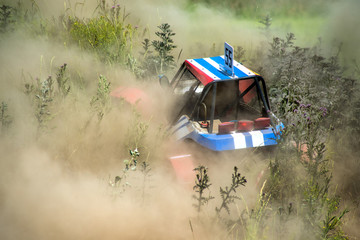 buggy in the dust