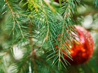 red glass ball christmas decoration