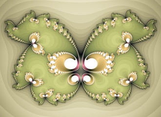 Beautiful Butterfly Shaped Fractal