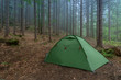 canvas print picture - tent