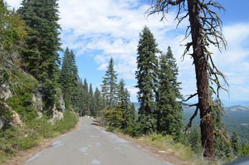 mountain road in the Sierra Nevada, California