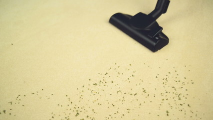 Vacuum Cleaner sweeping Brand New Carpet. Housework and hygiene