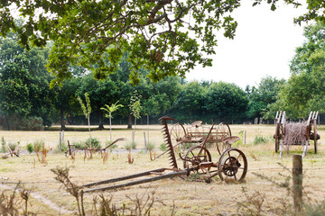 peasant household with abandoned farm equipment