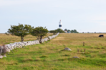 Lighthouse in oland