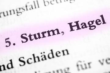 Sturm & Hagel