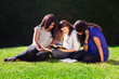 Three Friends Studying Together in Nature