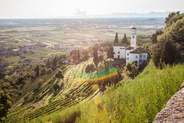 Cormòns - Friuli Venezia Giulia