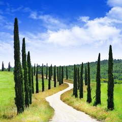 scenic Tuscany landscapes, bella Italia series