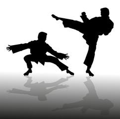 silhouette di uomo che pratica il karate