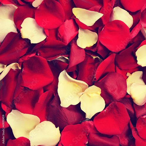 canvas print picture Background of rose petals in retro style