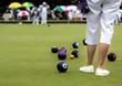 Ladies Lawn Bowls Match - 69013637