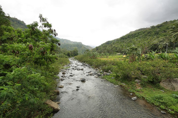 Tropical landscape in the way to Bajawa