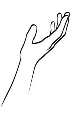 Hand Wellness