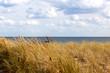 canvas print picture - Blick auf das Meer