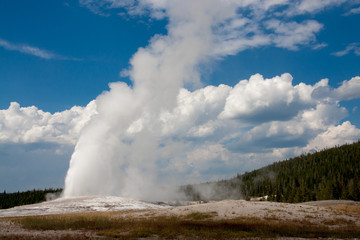 Erupting Old Faithful at Yellowstone National Park