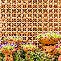 colorful flowers with decorative wall