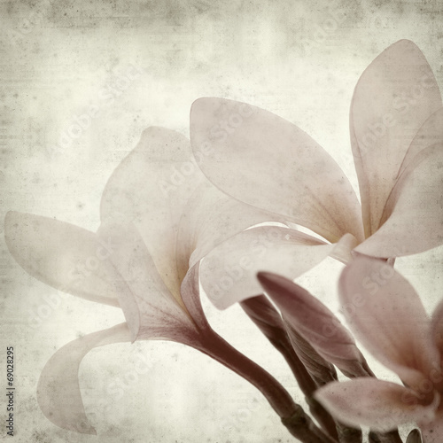 textured old paper background with © Tamara Kulikova
