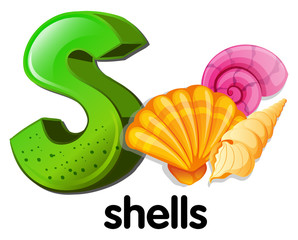 A letter S for shells