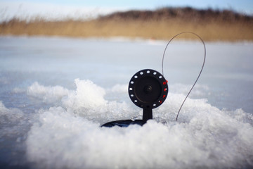 bait for winter fishing