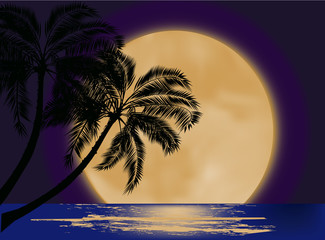 palm tree silhouette at moon