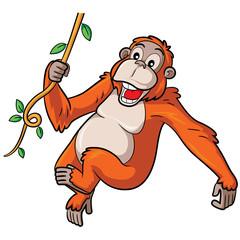 Orangutan Cartoon