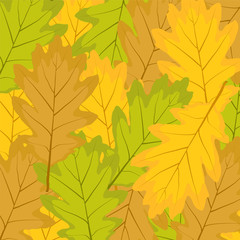 background from autumn leaves of oak