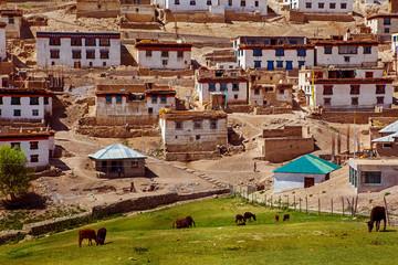 Kibber village in Himalaya mountains