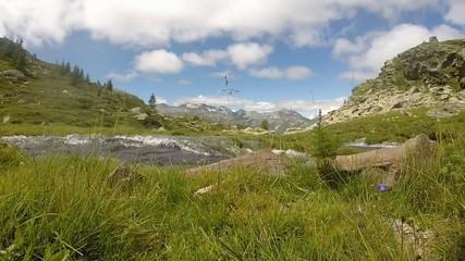 Paesaggio alpino con ruscello