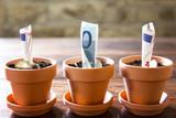 Euro Banknoten und Münzen in Blumentöpfe gepflanzt