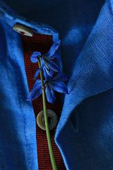 small bouquet of blue flowers on a man's shirt
