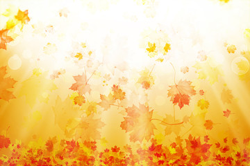 Bright abstract autumn leaves